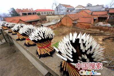 河南省项城市孙店镇汝阳刘村一户农家的楼顶上在晾晒毛笔。(中国搜索 杨正华 摄)