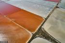 糖色甜心!克里米亚地区惊现红褐色盐湖