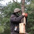 大连市林业局