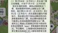 上海迪士尼乐园明日票已售罄 未来几天仍有大客流