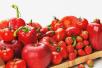 苦夏中绿豆汤不一定适合所有人 红色食物才是你需要的