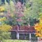 【图片新闻】徐州迷人秋色 生态美景引人醉
