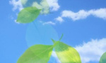 辽宁全省开展大气治理专项督查 将拆除燃煤小锅炉