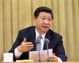 中国国际发展知识中心启动 习近平致贺信