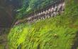 四川夹江明代摩崖造像10颗佛头被盗 警方介入