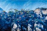 近200只灰鹤飞越海拔2000多米的伏牛山之巅