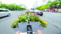 徐州淮海路、中山路隔离护栏安放造型别致盆花变身鲜花带