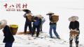 """""""精准扶贫""""题材电影《十八洞村》受好评:兼具时代主题与艺术深度"""