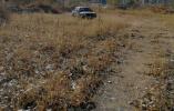 葫芦岛一报废车闯卡 司机弃车后草丛里被抓
