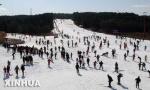 沈阳滑雪场纷纷迎客 票价没涨均以造雪为主