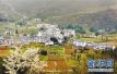 山东将创建5-8处乡村旅游创客示范基地