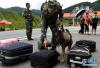 东营警方跨省缉毒 打掉90后女毒贩团伙