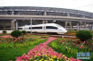 山东高铁网将再添新成员 济莱高铁正式开工!