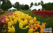 抢先看!沧州植物园二期今年开工建设