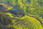 中国最美乡村