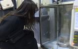 《此时此刻》城市流浪动物激增 法国女教师献计献策