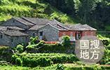 山東省派第一書記:四類産業讓村民致富
