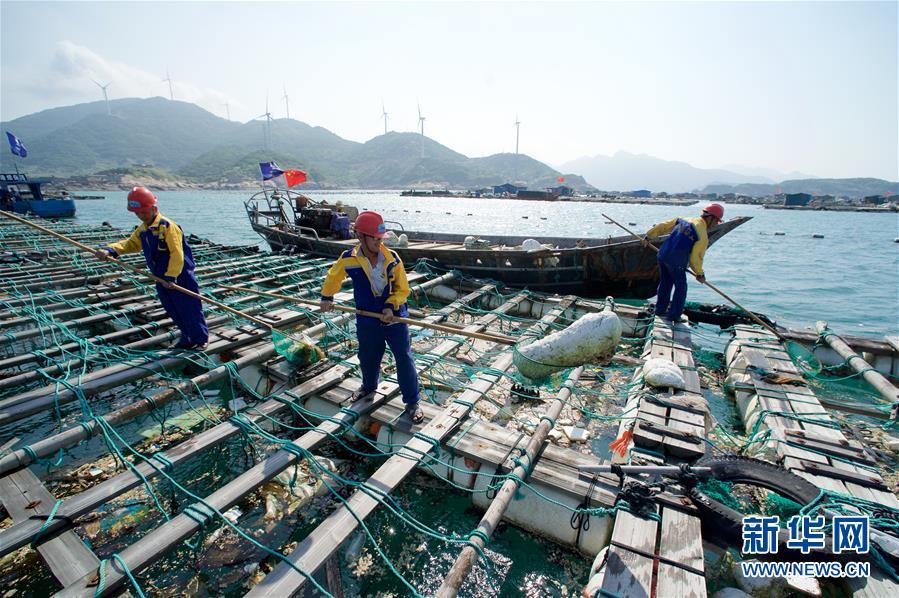 (环境)(8)世界海洋日:保护和可持续利用海洋