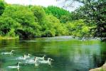 春夏秋冬皆特色 龙江生态旅游可发展为万亿级新产业