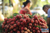 空腹吃荔枝会引发低血糖症吗?如何正确吃荔枝?