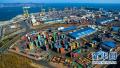 上半年河南进出口完成2128亿 郑州占近七成