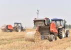 农业农村部:提升秸秆产业化利用 加大终端产品补贴