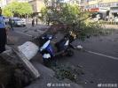 北京遭强风袭击4人遇难 航班经历惊魂一刻