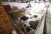 河南汝州重启张公巷窑考古发掘引关注