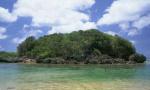 """大连广鹿岛""""生态岛礁""""国家级海岛生态修复项目开工"""
