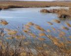 初秋骑游何处寻?在这些湿地开始你的行程吧