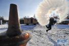 内蒙古第五届中国冷极节开幕