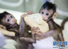 英媒:中国科技发展实现大飞跃 成为被追逐的榜样