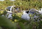 法国一观光飞机坠毁