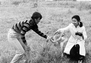 30年前那个护鹤女孩曾来过…追忆中国第一位