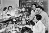 """上世纪七十年代中国科学家与诺贝尔奖""""擦肩而过""""之真相"""