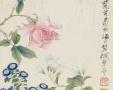 梅兰芳的花鸟画难得一见!