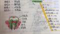 超萌!初三女生把科学笔记整理成绘本:每页都有插画