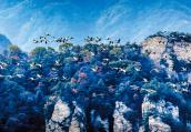 近200只灰鹤飞越伏牛山 场面十分壮观