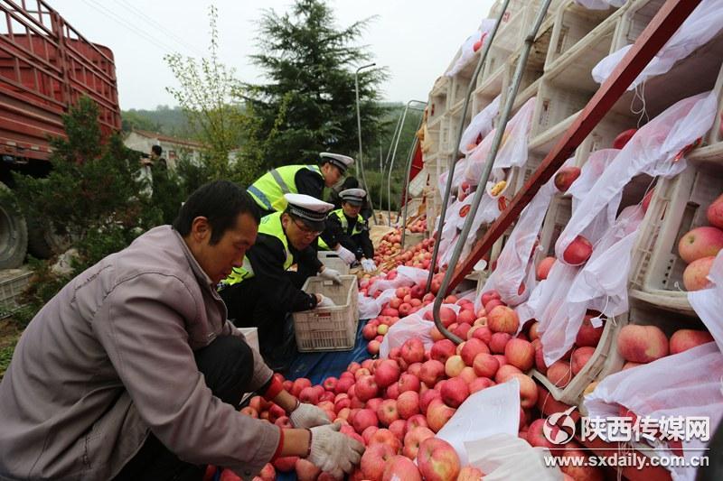 10吨苹果散落之后