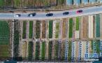 浙江安吉鲁家村:打造田园综合体