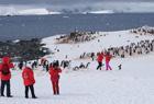 去南极旅行