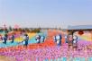【旅游时讯】敦煌7月将举办文博国际理想节