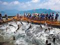 """千岛湖生态保护再升级 """"五一""""起84条河流全域禁渔"""