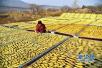 山东农产品出口总值连续十九年领跑全国