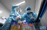 人工智能系统可助预测联合用药副作用