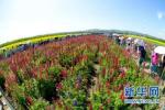 沧州这39个旅游扶贫重点村实现脱贫!