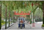 《南京市生活垃圾处置监督管理办法》公开征集意见