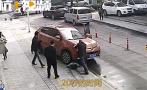 杭州女子蹲地上看手机被卷入车底,20秒内大批市民自发营救