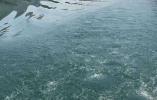 杭州主城区首个!江新苑二次供水设施改造已完工