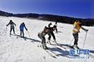 河北省冬奥赛会志愿者人才储备逾三万
